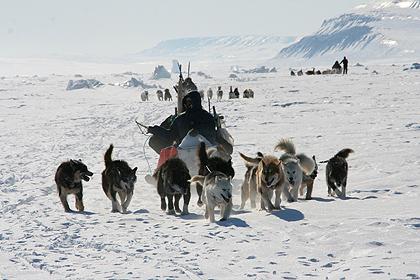 Dogsledding in the worlds biggest nationalpark, image by Nanu Travel