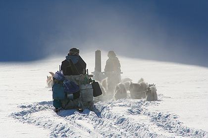Dogsledge in Jamesonland , image by Nanu Travel