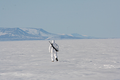 Seal hunting on ice ,  image by Nanu Travel
