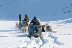 Dogsledexpedition in the worlds largest fjordsystem , Scoresby Sund
